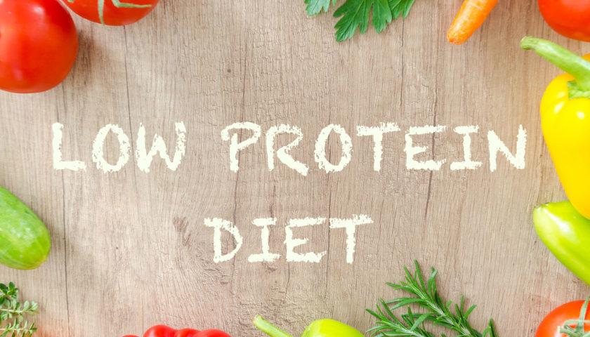 low protein diet
